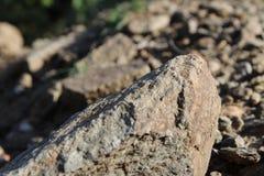 山岩石和树 免版税库存照片