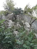 山岩石在福雷斯特的 免版税库存图片