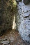 山峡谷在森林里 免版税库存图片