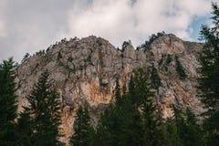 山峭壁,岩石,森林 库存照片