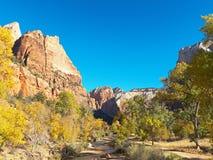 山峰和秋天颜色在锡安国家公园犹他 库存照片