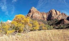 山峰在锡安国家公园犹他 免版税库存图片