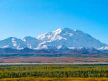 山峰在Denali国家公园,阿拉斯加 免版税库存图片