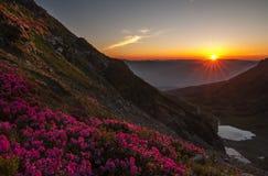 从山峰顶的早晨日出  库存照片