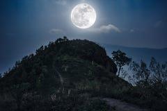山峰风景 在小山的充分上面的走道和 免版税库存图片