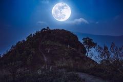 山峰风景 在小山的充分上面的走道和 免版税库存照片