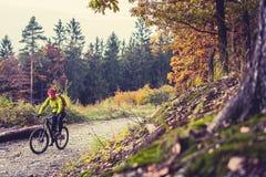 山循环在秋天森林里的骑自行车的人骑马 免版税库存图片