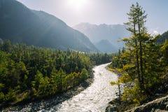 山快速流动的河 库存照片