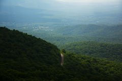 山景和森林公路 库存照片