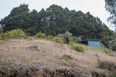 山景圣杰拉多de同田,哥斯达黎加 免版税库存照片