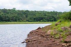 山景风景美好的森林小山自然 免版税库存照片