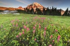 山更加多雨的国家公园 免版税库存图片