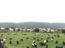 山村 黎巴嫩 东部中间名 免版税库存图片