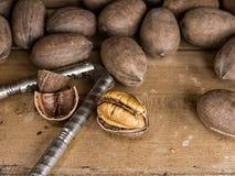 山核桃果和薄脆饼干 免版税库存图片