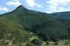 山森林在一晴朗的多云天 免版税库存图片