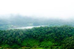 山森林风景视图有雾的 免版税库存图片