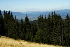 山森林风景 在视图之上 免版税库存照片