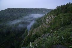山森林风景 树和河雾的在清早 库存图片