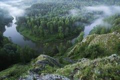 山森林风景 树和河雾的在清早 免版税图库摄影