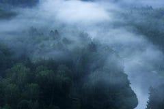 山森林风景 树和河雾的在清早 库存照片