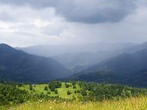 山森林风景 免版税库存照片