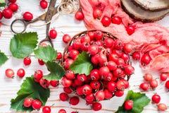山楂树莓果和叶子在一个柳条筐的 库存图片