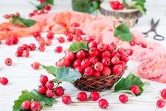 山楂树莓果和叶子在一个柳条筐的 免版税库存照片