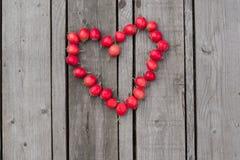 山楂树莓果的红色心脏在木背景的 库存照片