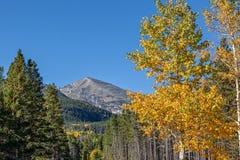 山横向在秋天 免版税图库摄影