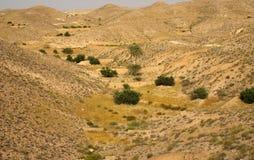 山横向在突尼斯,非洲 免版税库存照片