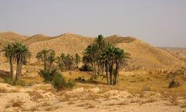 山横向在突尼斯,非洲 免版税图库摄影