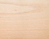 山毛榉的木材纹理 库存照片