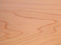 山毛榉的木材纹理 库存图片