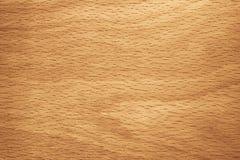 山毛榉的木材 免版税库存图片