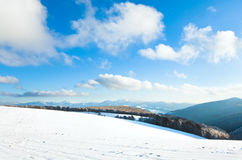 山毛榉第一个森林山雪冬天 图库摄影
