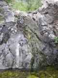 山池塘 库存图片