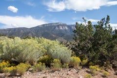 山沙漠和酥脆蓝天在它的最好 库存图片
