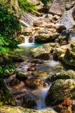山沟小河和水池 库存图片