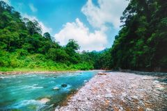 山河和密集的密林 苏门答腊,印度尼西亚 免版税图库摄影