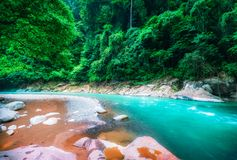 山河和密集的密林 苏门答腊,印度尼西亚 图库摄影