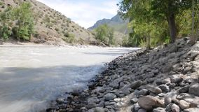 山河在湿软的森林的岩石岸将夹在中间的Chuya的迅速和湍流 股票录像