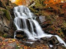 山河在秋天森林里 免版税库存图片