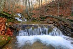 山河小瀑布在秋天森林里 免版税图库摄影