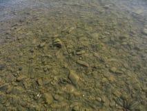 山河的一个岩石底部的金黄棕色抽象背景 免版税库存图片