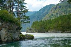 山河的合流,山阿尔泰 免版税库存图片
