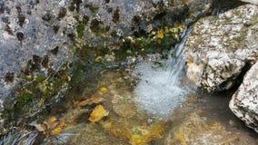 山河的清楚的小河 净水上升upSlow运动视频 股票录像