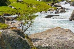 山河的片段有一块巨大的石头的 免版税库存图片