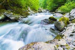 山河, Valgerola,意大利 图库摄影