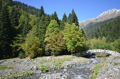 山河Atsetuka阿布哈兹的看法 免版税库存图片