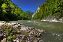 山河Dunajec的美丽的景色 免版税库存照片